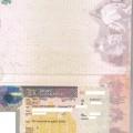 Visa-Approval-Cecilia